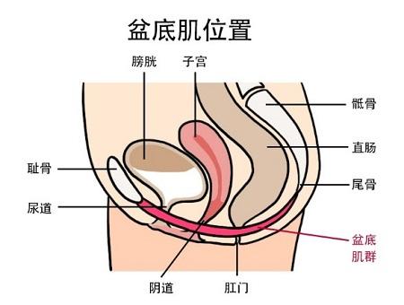 保持阴道紧致持久的方法,快来瞧瞧!